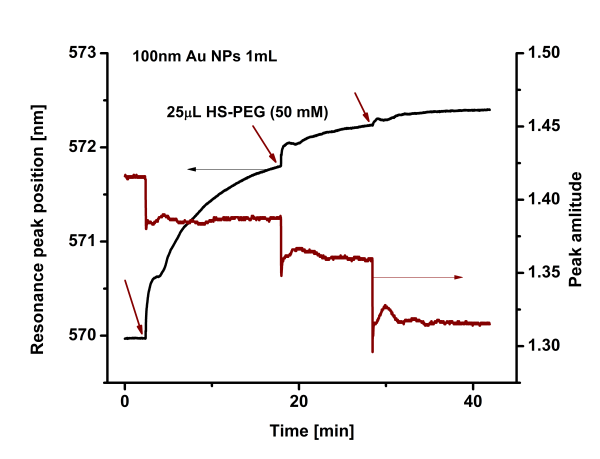 Functionalization Nanoparticle PEG